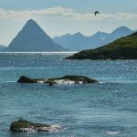 Norvegija. Lofotenų salos