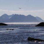 Norvegija. Lofotenas