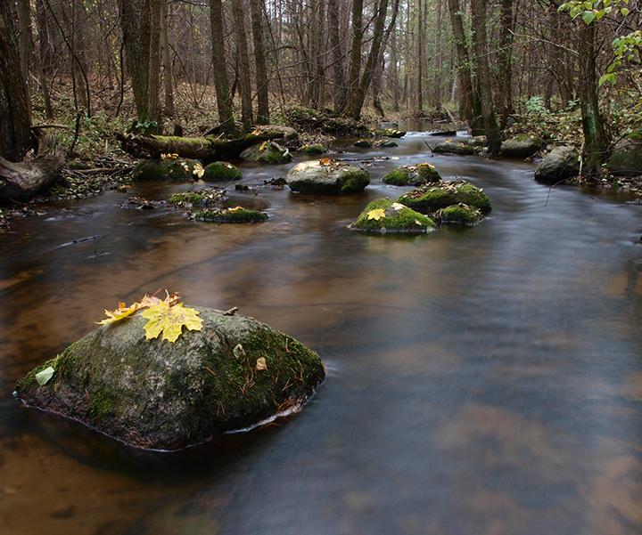 Šventelės upelis